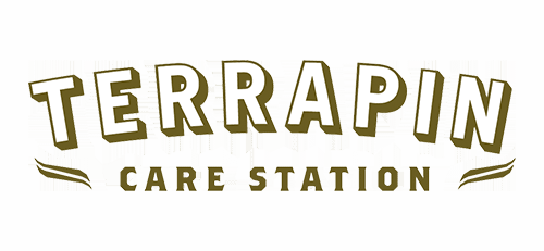 terrapin care station denver dispensary logo
